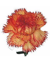 Standard Carnation C99